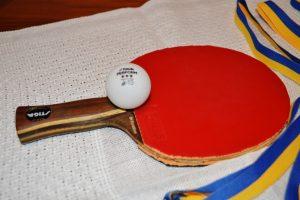 En bild på ett pingisrack och pingisboll som ligger på ett bord