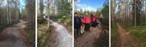 SPF Hälsobingo på hälsospåret Käglan med start 09,30-10,00 @ Hälsospåret Käglan